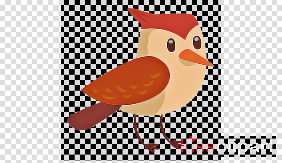 bird beak european robin cartoon songbird