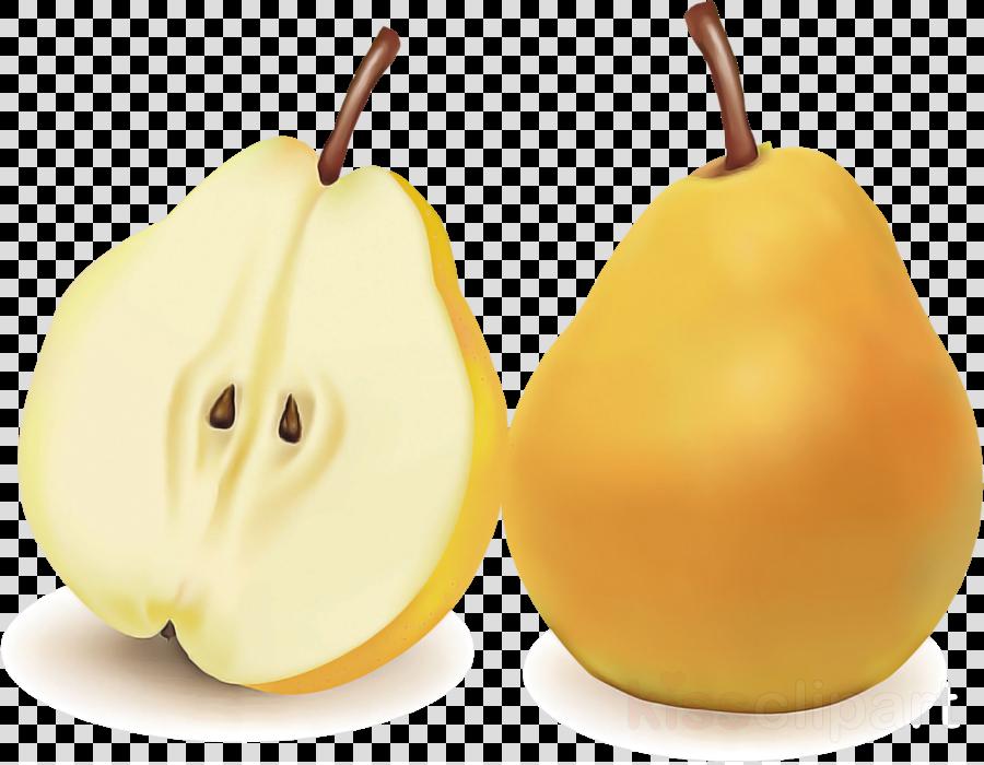 pear pear fruit plant tree
