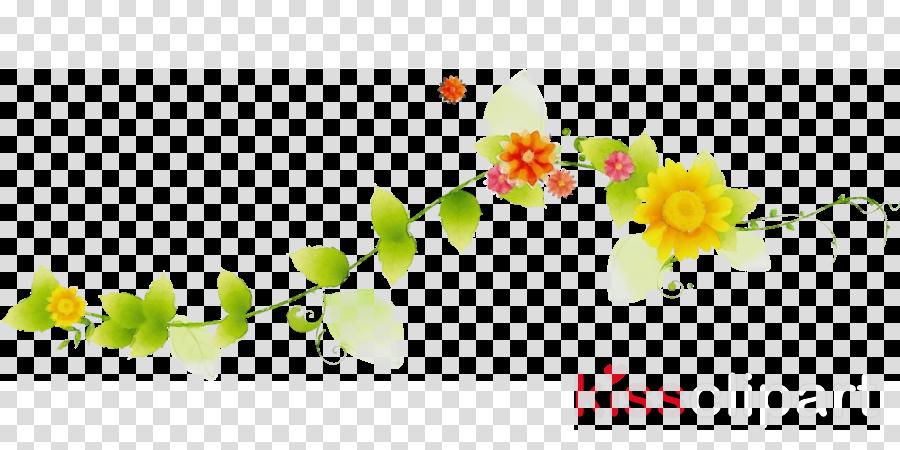 flower branch plant leaf petal