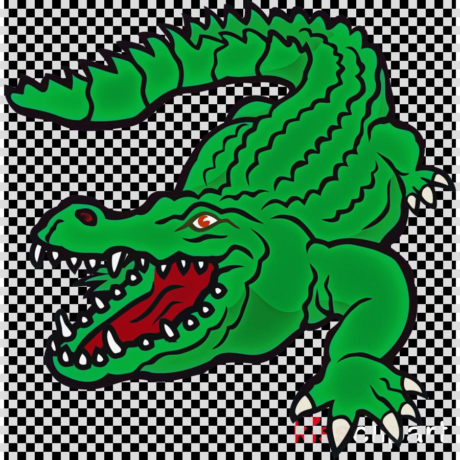 green crocodile head crocodilia alligator