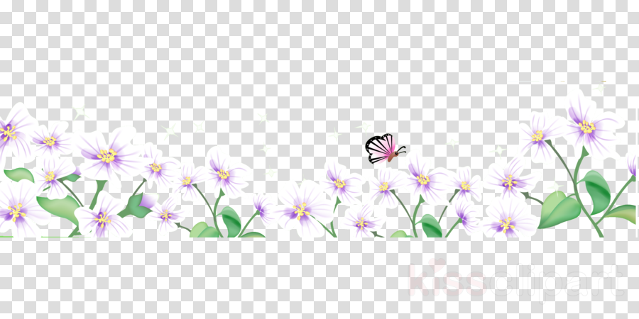 flower border flower background