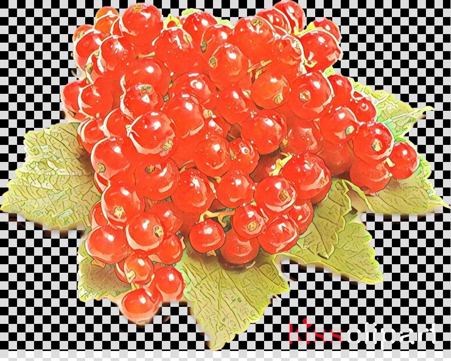 fruit food berry seedless fruit plant