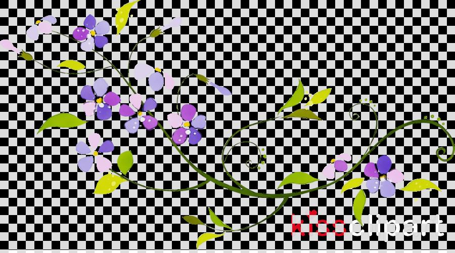 purple violet lilac plant flower
