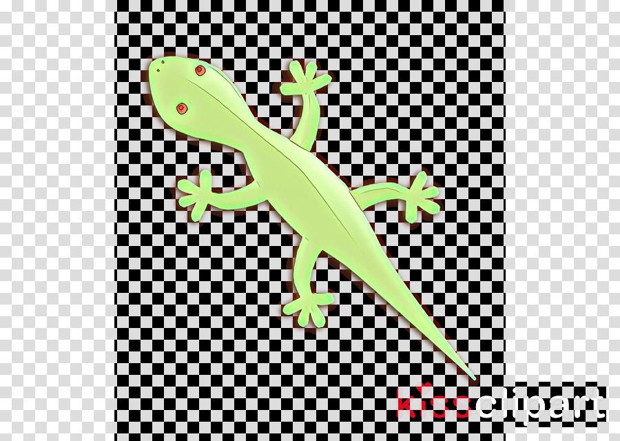 green reptile lizard gecko scaled reptile