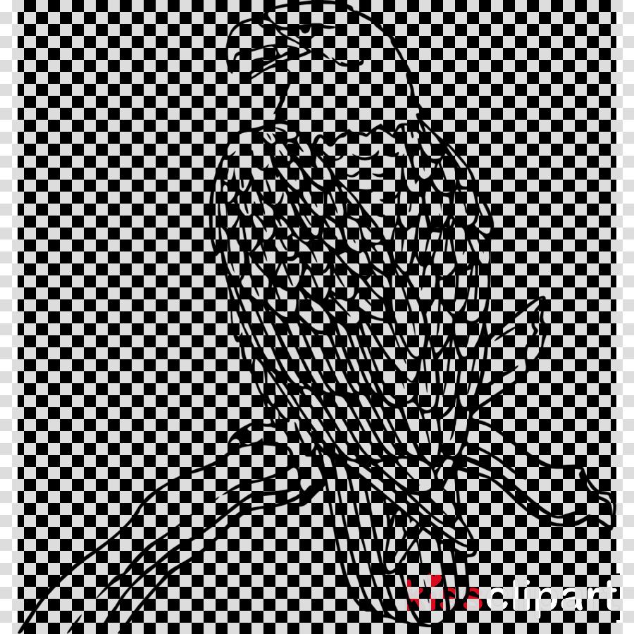 bird beak falcon peregrine falcon bird of prey