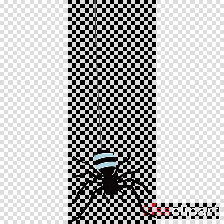 spider halloween