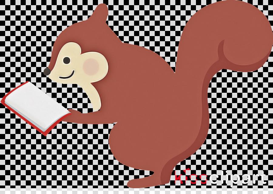Squirrel autumn reading