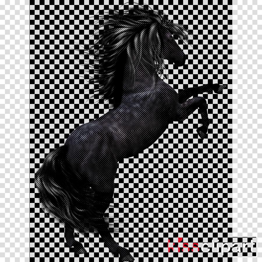 horse mane stallion animal figure mare