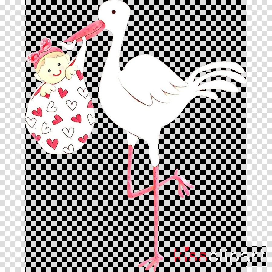 stork bird pink ciconiiformes white stork