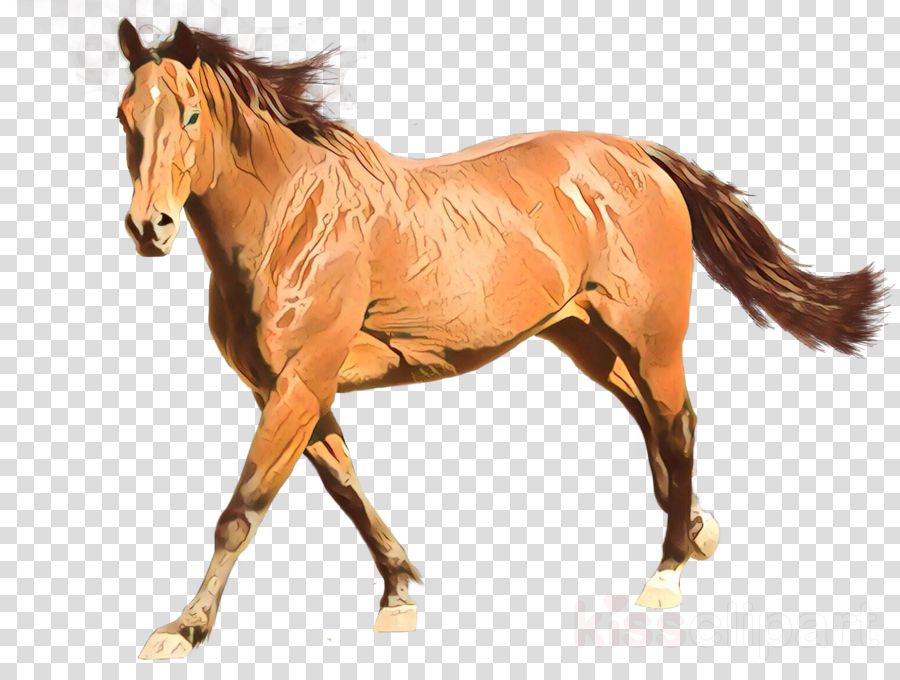 horse sorrel animal figure mane mare
