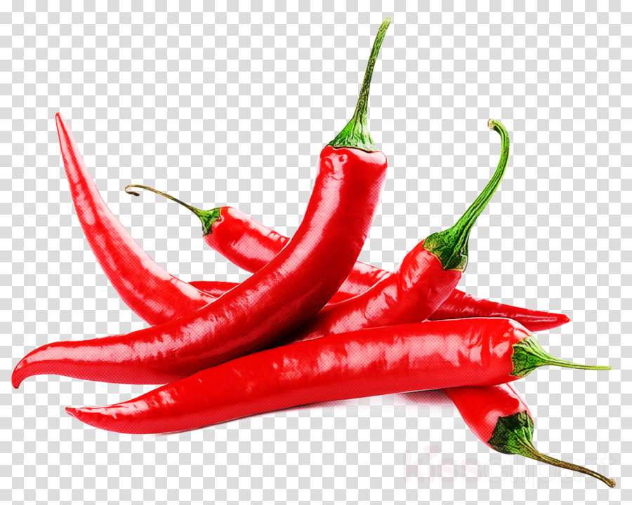 malagueta pepper bird's eye chili serrano pepper chili pepper tabasco pepper