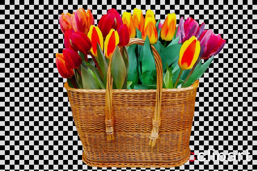 flower flowerpot tulip plant cut flowers