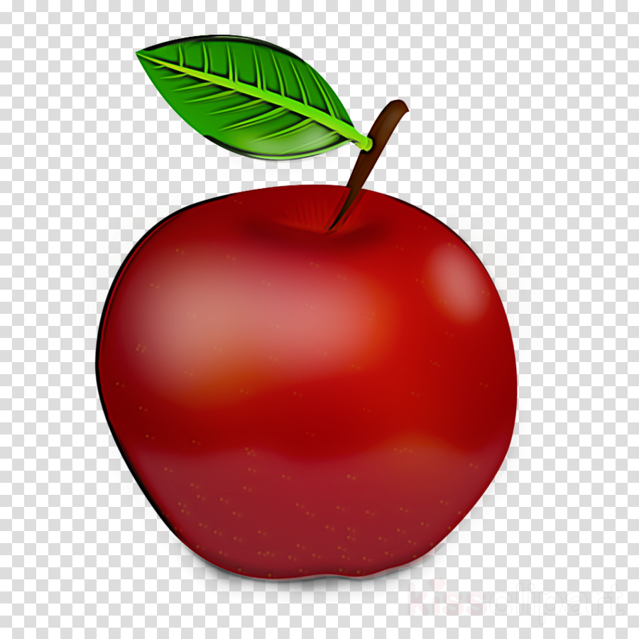 fruit red leaf plant apple