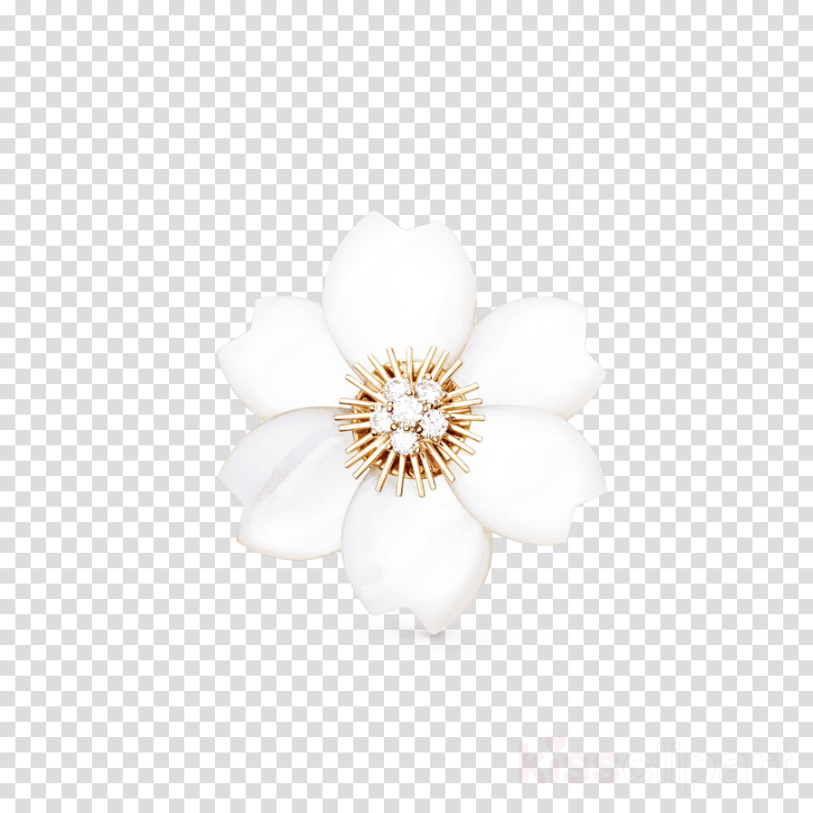 white petal flower plant brooch