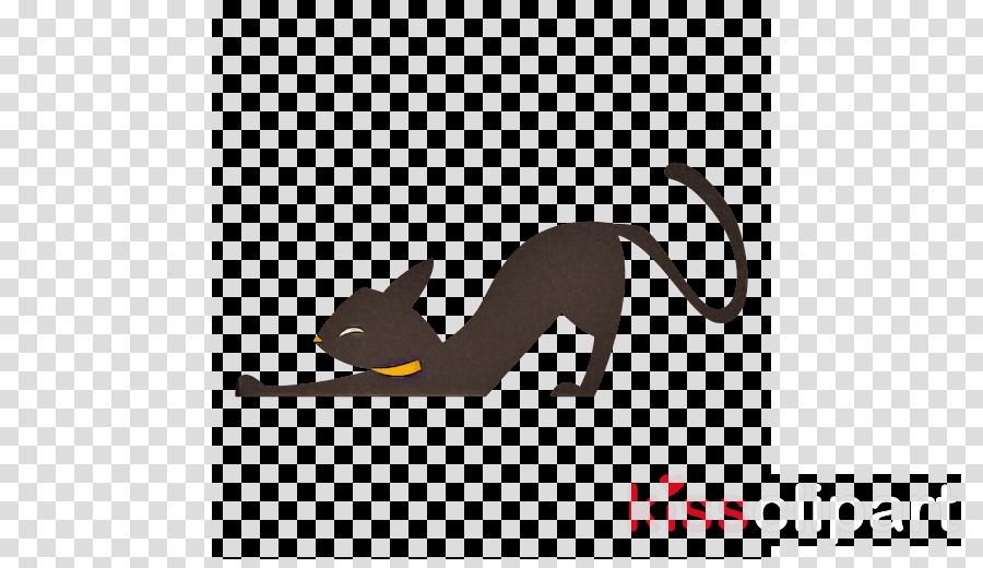 black cat tail cat animal figure small to medium-sized cats