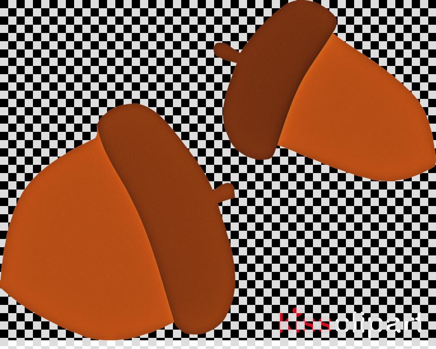 acorn autumn