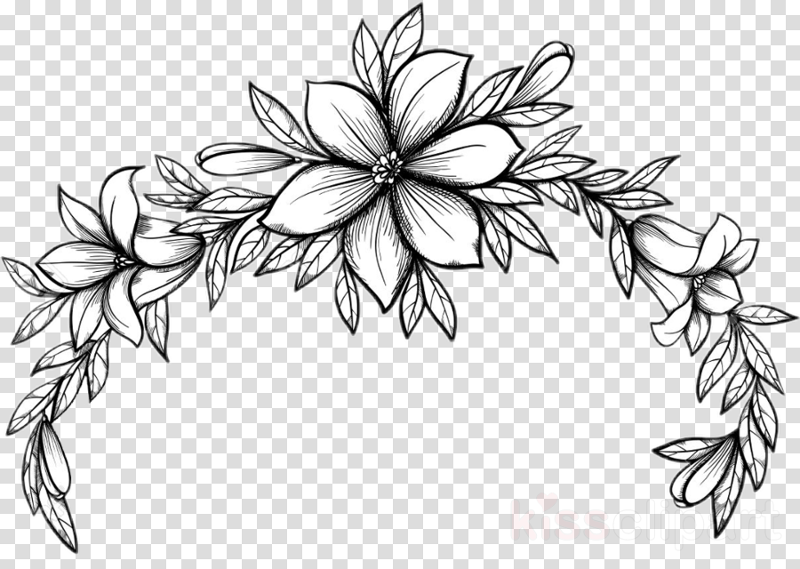 line art black-and-white plant coloring book leaf