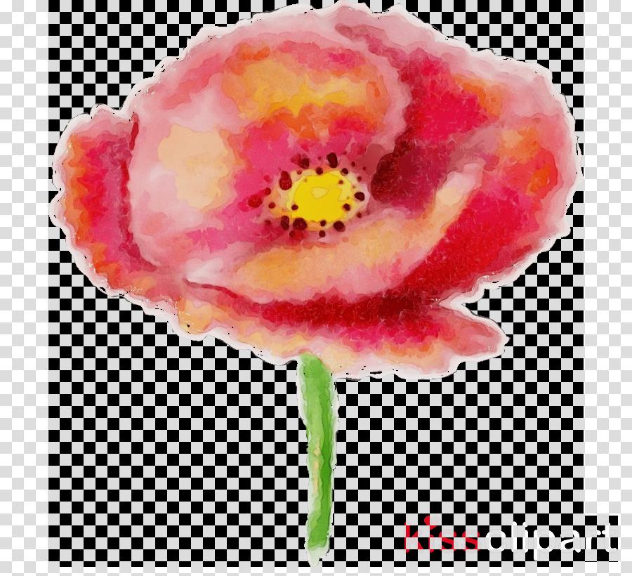 pink flower watercolor paint plant petal
