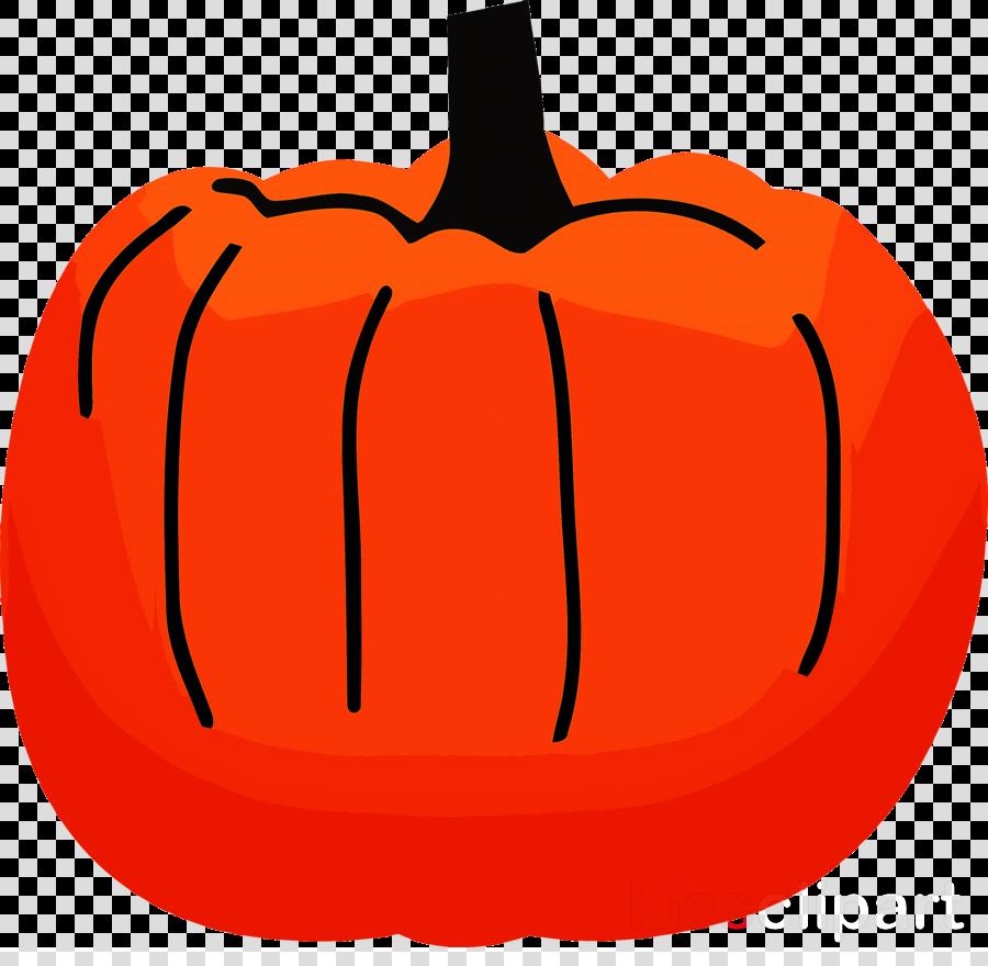 pumpkin thanksgiving autumn