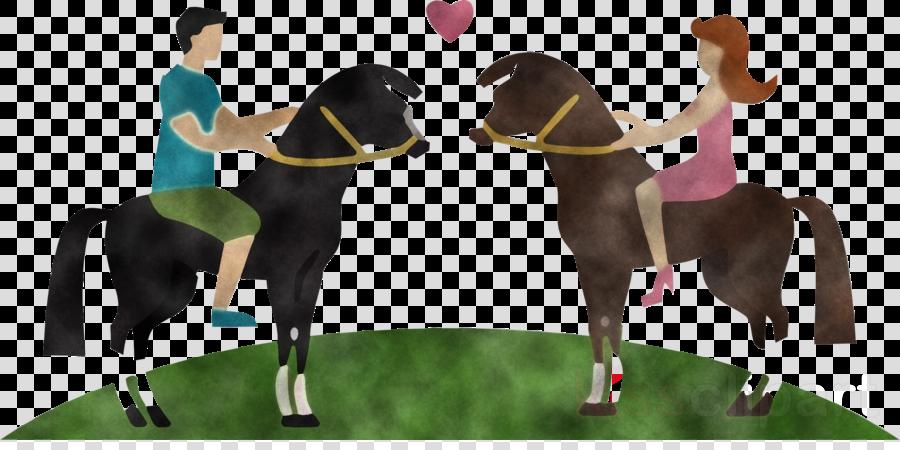 horse animal sports mane horse supplies horse racing