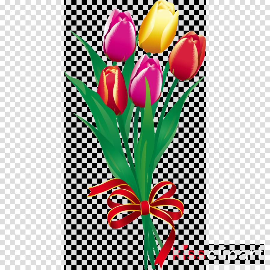 Tulip Bouquet Flower Bouquet flower bunch
