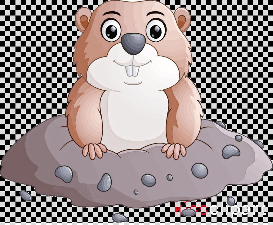 groundhog day happy groundhog day groundhog