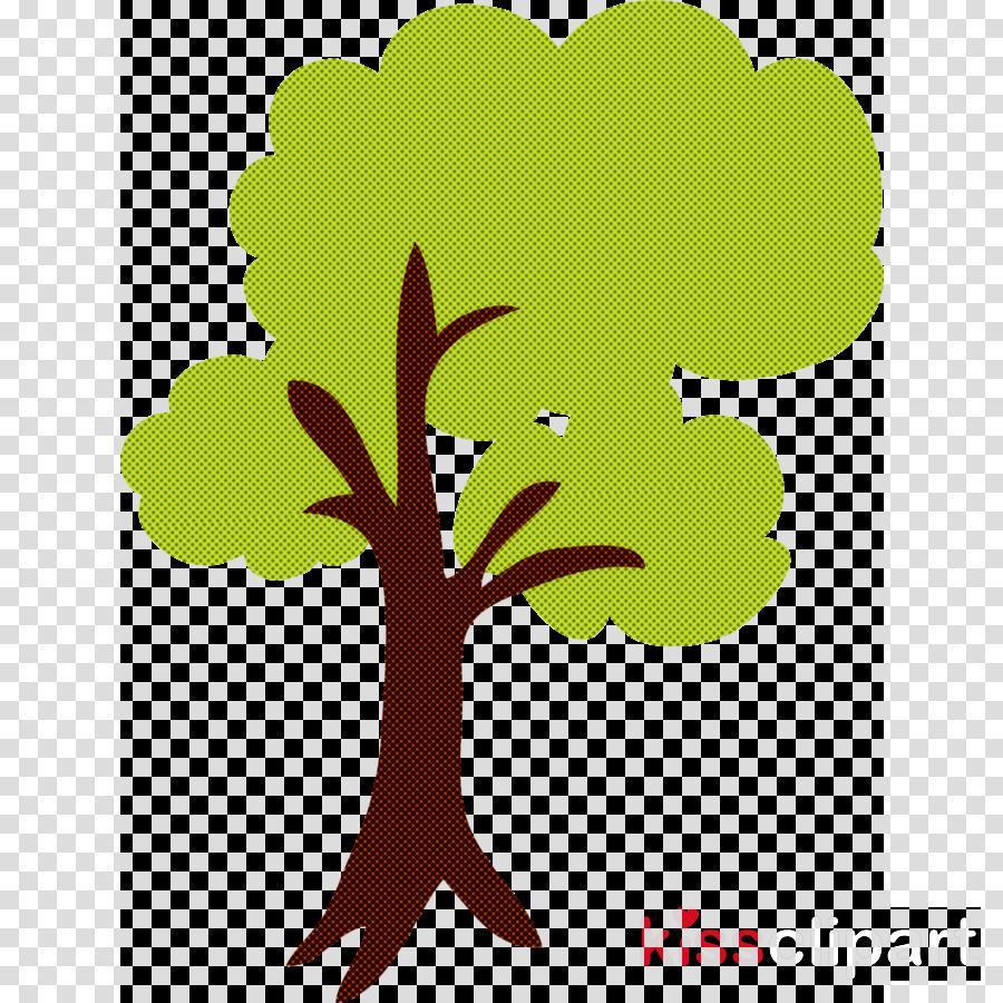 leaf green tree plant branch
