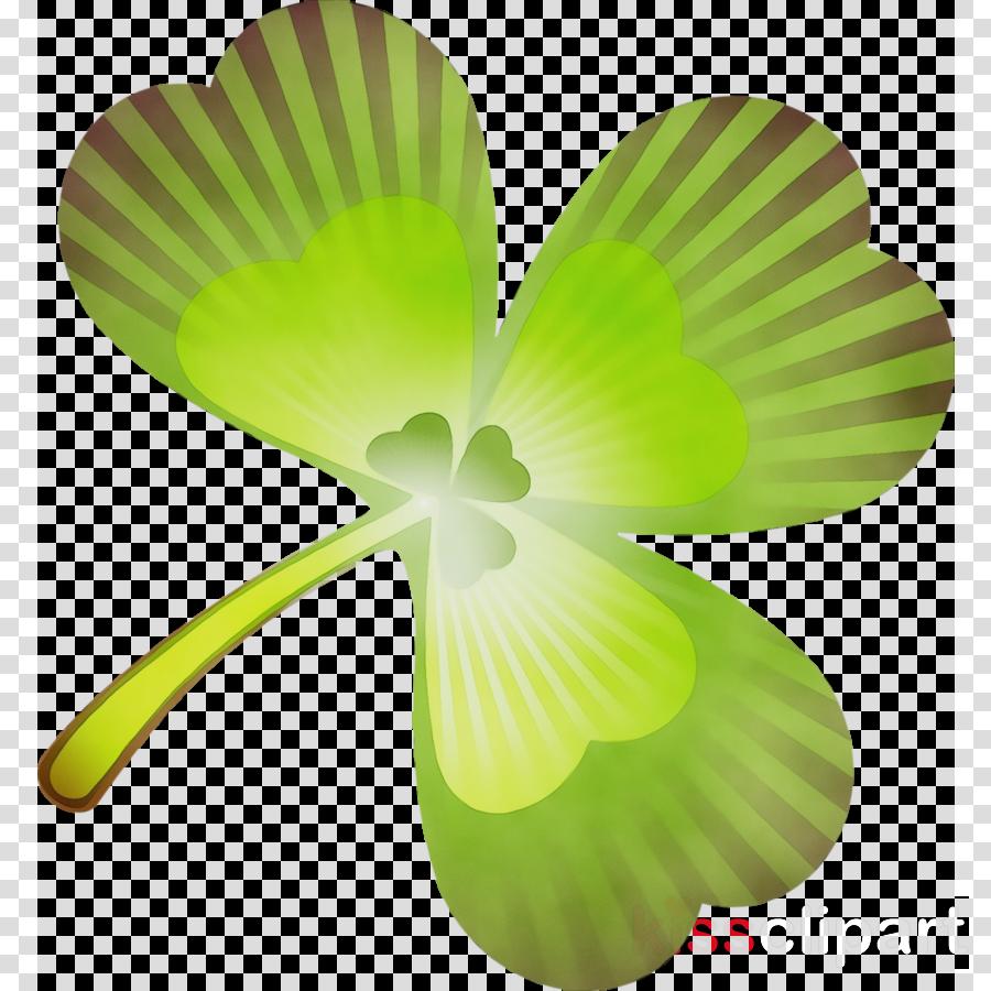 green leaf petal plant flower