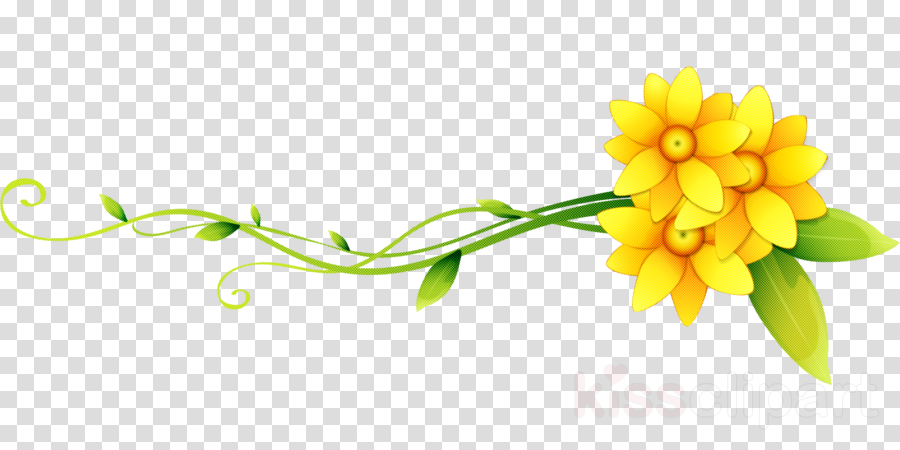 flower border flower background flower line clipart flower yellow plant transparent clip art flower border flower background flower