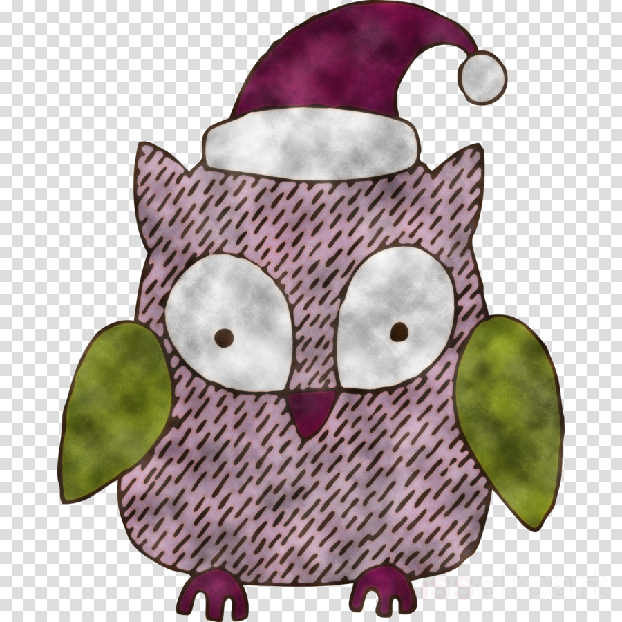 owl green purple bird of prey pink