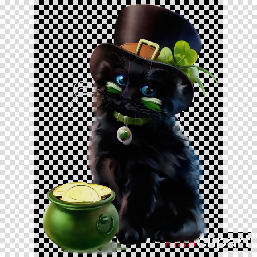 black cat cat small to medium-sized cats bombay