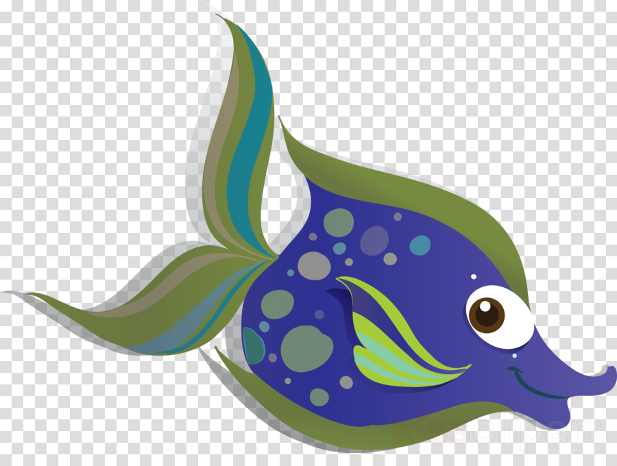fish fish blue whale