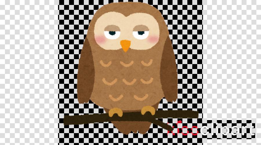 owl bird of prey bird cartoon brown