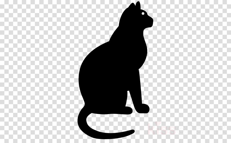 cat small to medium-sized cats black-and-white tail silhouette