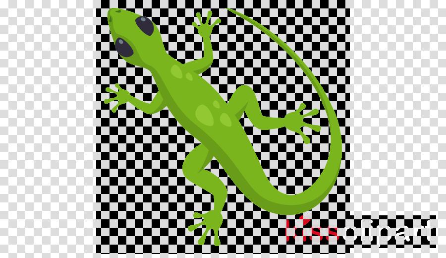green gecko lizard reptile scaled reptile