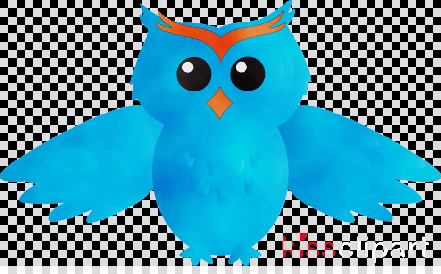 owl bird turquoise blue aqua