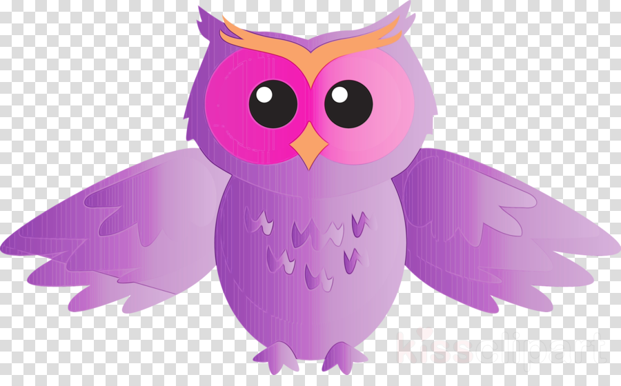owl bird purple violet bird of prey