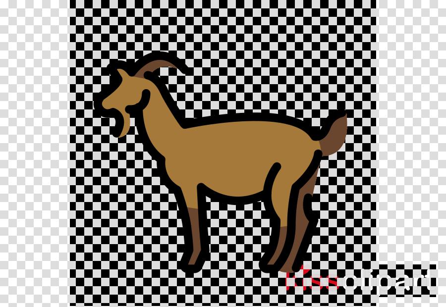 goats goat cow-goat family goat-antelope chamois