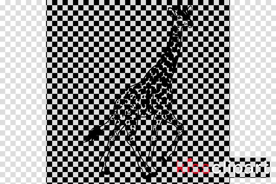 giraffe giraffidae wildlife neck line art