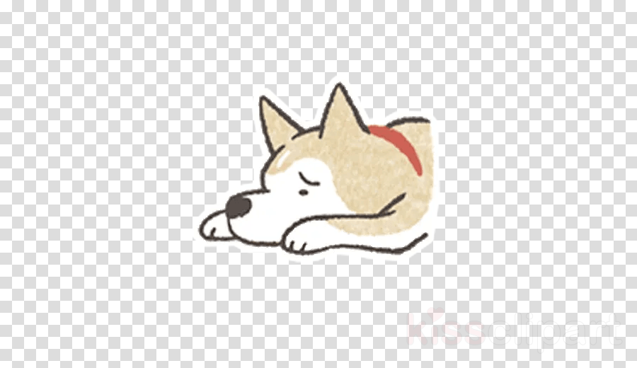 dog nose cartoon akita canaan dog