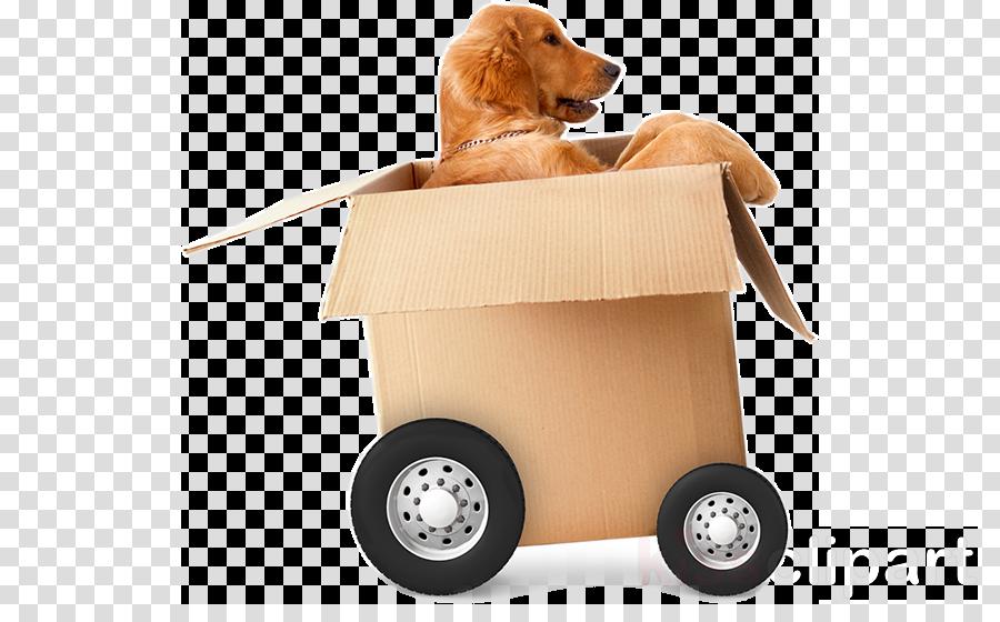 dog wheel vehicle golden retriever cart