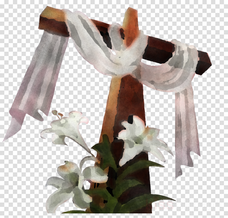 white flower plant table lily