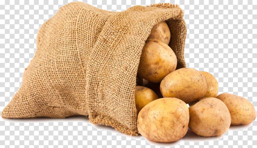 food potato root vegetable vegetable solanum