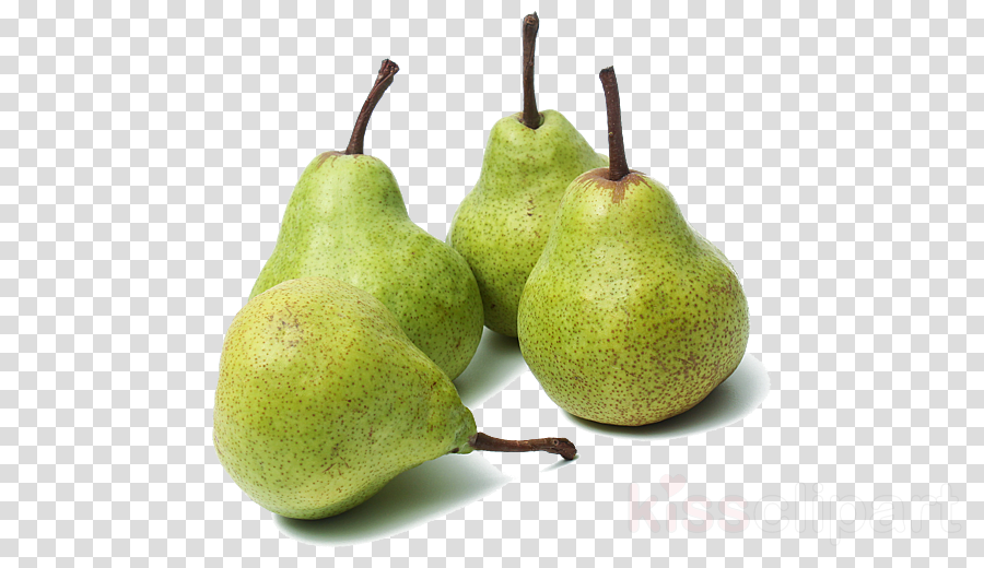 pear pear tree plant natural foods