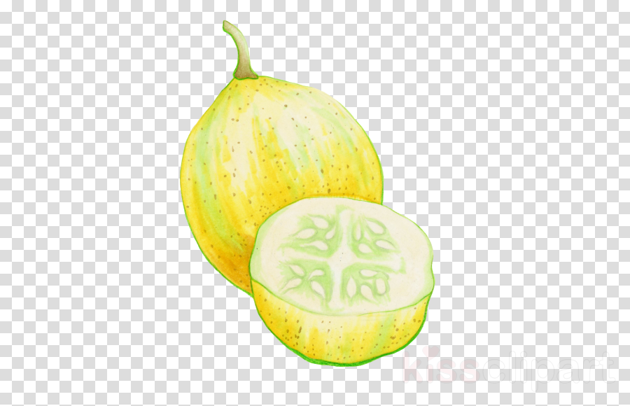 plant fruit pear natural foods food