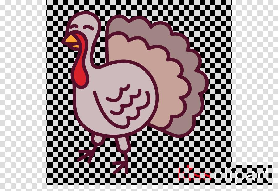bird beak flightless bird fowl turkey