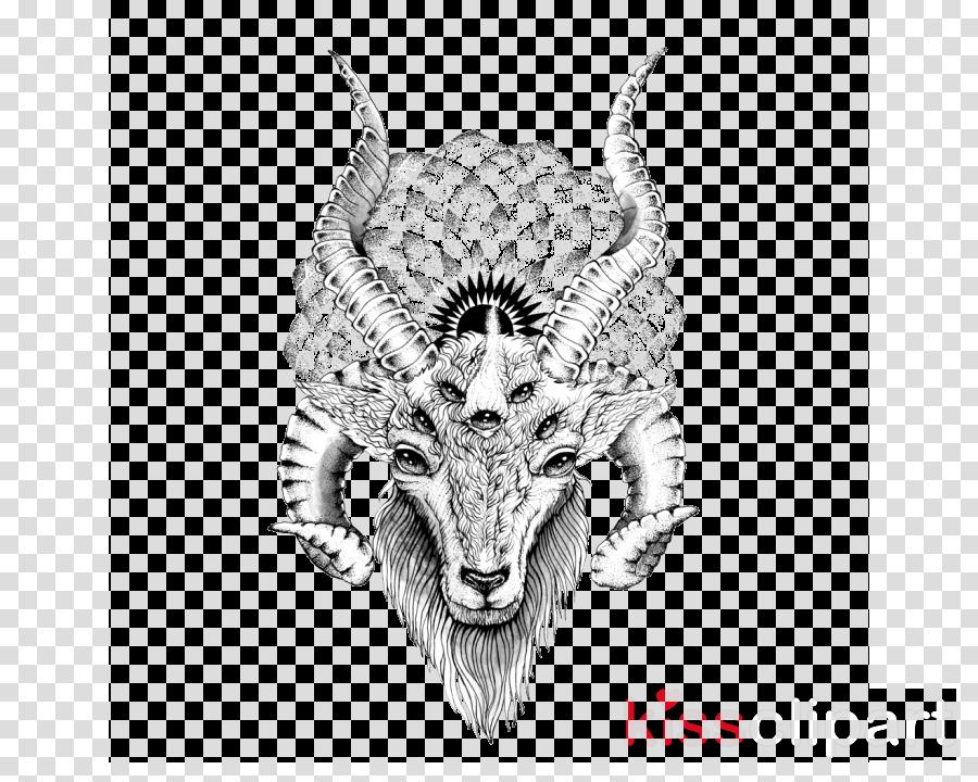 goats horn goat argali head