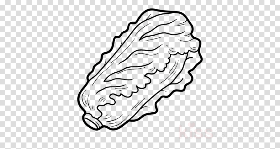 white line art head coloring book drawing