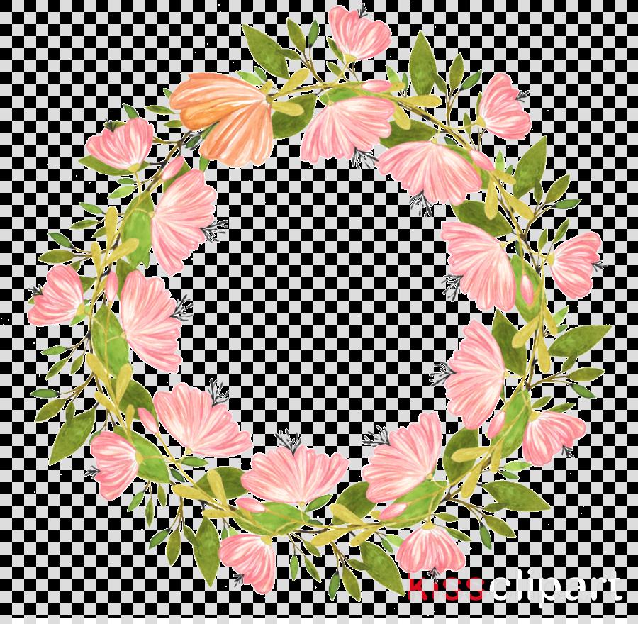 pink leaf flower plant cut flowers