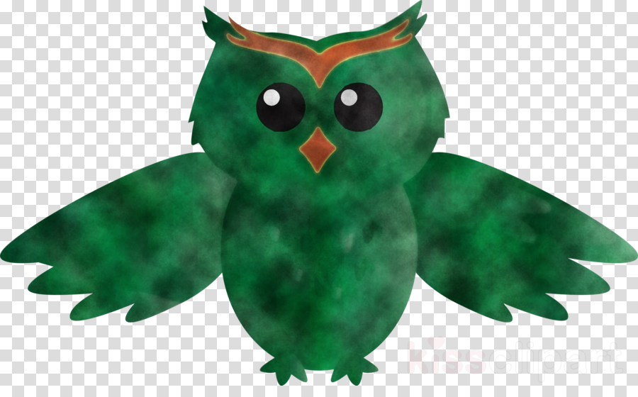 owl green bird leaf bird of prey